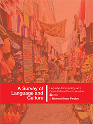 A Survey of Language and CultureMike Findlay