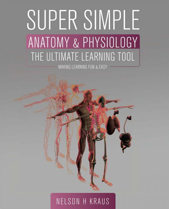Super Simple Anatomy And Physiology